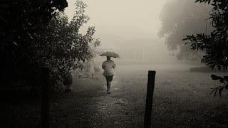 Jab Varsha Shuru Hoti Hai   Kedarnath Singh   जब वर्षा शुरु होती है