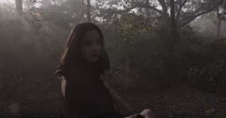 Dil Lagaayein Lyrics | Ali Sethi | Shakeel Sohail
