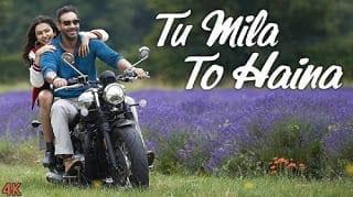 Tu Mila To Haina Lyrics - De De Pyaar De - Arijit Singh